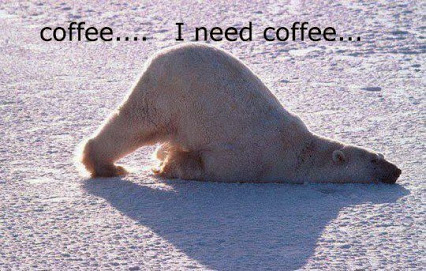 Coffee-I-Need-Coffee